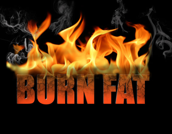 top fat burning ingredients