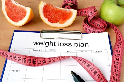 What is the Number of Daily Meals for Weight Loss