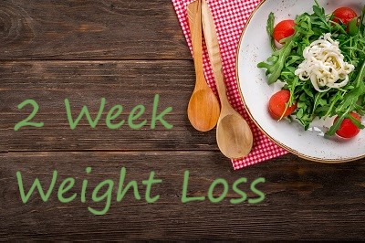 2 Week Weight Loss Plan